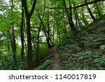 natural woodland for background  | Shutterstock . vector #1140017819