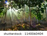 tropical forest with sun rays.... | Shutterstock . vector #1140060404