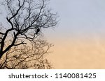 black crow and tree in the... | Shutterstock . vector #1140081425
