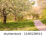 park nature path in the meadow | Shutterstock . vector #1140128411