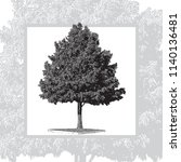 realistic natural pine tree... | Shutterstock .eps vector #1140136481