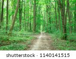 forest trees. nature green wood ... | Shutterstock . vector #1140141515