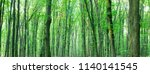 forest trees. nature green wood ... | Shutterstock . vector #1140141545