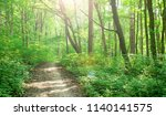 forest trees. nature green wood ... | Shutterstock . vector #1140141575
