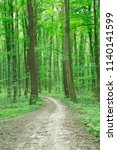 forest trees. nature green wood ... | Shutterstock . vector #1140141599