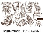 vector collection of myrtle... | Shutterstock .eps vector #1140167837