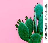 cactus minimal. plants on pink... | Shutterstock . vector #1140168887