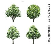 collection of tree isolated on... | Shutterstock .eps vector #1140176231