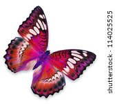 red butterfly flying | Shutterstock . vector #114025525