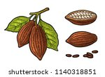 leaves and fruits of cocoa... | Shutterstock .eps vector #1140318851