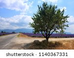 lavender landscape with a... | Shutterstock . vector #1140367331