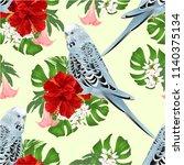 seamless texture budgerigar ... | Shutterstock .eps vector #1140375134