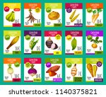 exotic vegetables price cards... | Shutterstock .eps vector #1140375821