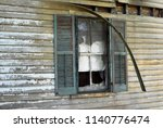 an abandoned house sits...   Shutterstock . vector #1140776474