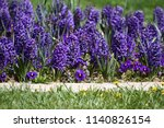 field of colorful spring...   Shutterstock . vector #1140826154
