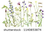 background with watercolor...   Shutterstock . vector #1140853874