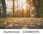 low angle toned photo of autumn ...   Shutterstock . vector #1140869291