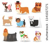dog vector puppy pet animal... | Shutterstock .eps vector #1141027271
