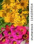 bouquet of garden pink and...   Shutterstock . vector #1141054514