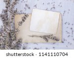 blank old paper with dry...   Shutterstock . vector #1141110704