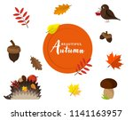 set of autumn vector isolated...   Shutterstock .eps vector #1141163957