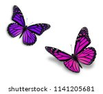 two colorful monarch butterfly...   Shutterstock . vector #1141205681