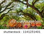banyuwangi  indonesia   july 04 ... | Shutterstock . vector #1141251401