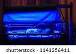 newborn baby with neonatal...   Shutterstock . vector #1141256411