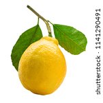 lemon with green leaf isolated...   Shutterstock . vector #1141290491