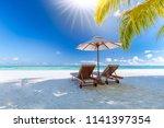 amazing tropical landscape ... | Shutterstock . vector #1141397354