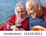 happy senior couple enjoying... | Shutterstock . vector #1141413011