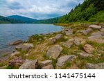 sea   dam in black forest  ... | Shutterstock . vector #1141475144