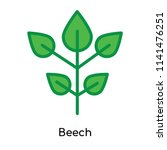 beech icon vector isolated on... | Shutterstock .eps vector #1141476251
