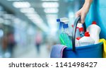 cleaner lady with a bucket and... | Shutterstock . vector #1141498427