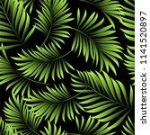 palm. seamless pattern from... | Shutterstock .eps vector #1141520897