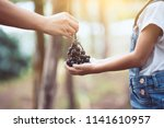 parent give bunch of red grapes ... | Shutterstock . vector #1141610957