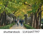 there are many tourists in... | Shutterstock . vector #1141647797