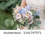 the bride in an elegatny dress... | Shutterstock . vector #1141747571