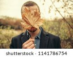seasonal autumn fashion.... | Shutterstock . vector #1141786754