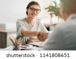 business people discussion... | Shutterstock . vector #1141808651