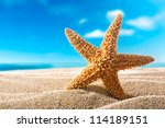 Starfish Or Sea Star On The...