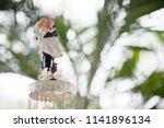 beautiful wedding cake  white... | Shutterstock . vector #1141896134