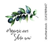 olive's branch with title... | Shutterstock . vector #1141989647