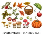 set of vector in autumn style.... | Shutterstock .eps vector #1142022461
