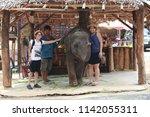 phuket thailand   june 11  2017 ... | Shutterstock . vector #1142055311