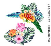 tropical collection with exotic ... | Shutterstock .eps vector #1142267957