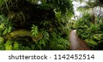 garfield conservatory on the... | Shutterstock . vector #1142452514