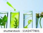 pipette over test tube dropping ... | Shutterstock . vector #1142477801