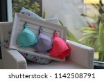Small photo of Ladies Lingerie Readymade Garments with Beautiful Photoshoots
