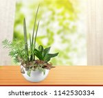 a pot of a peace lily houseplant | Shutterstock . vector #1142530334